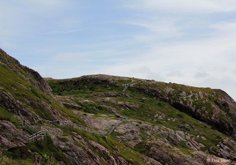 Newfoundland - Signal Hill's North Head Trail