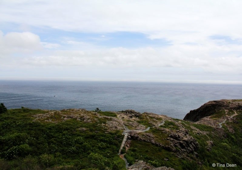 007_NorthHeadTrail-signal-hill Newfoundland – Signal Hill's North Head Trail