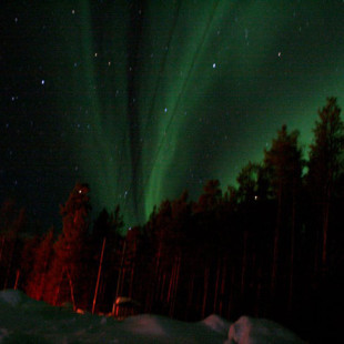 The Northern Lights Came Out To Play
