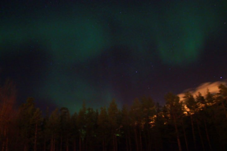 05 patricia 017 The Northern Lights Came Out To Play
