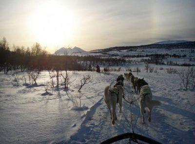 Norway - Tromsø and Dog Sledding