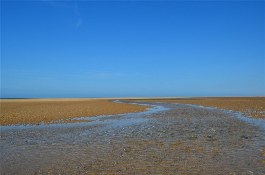 A Norfolk Pause…