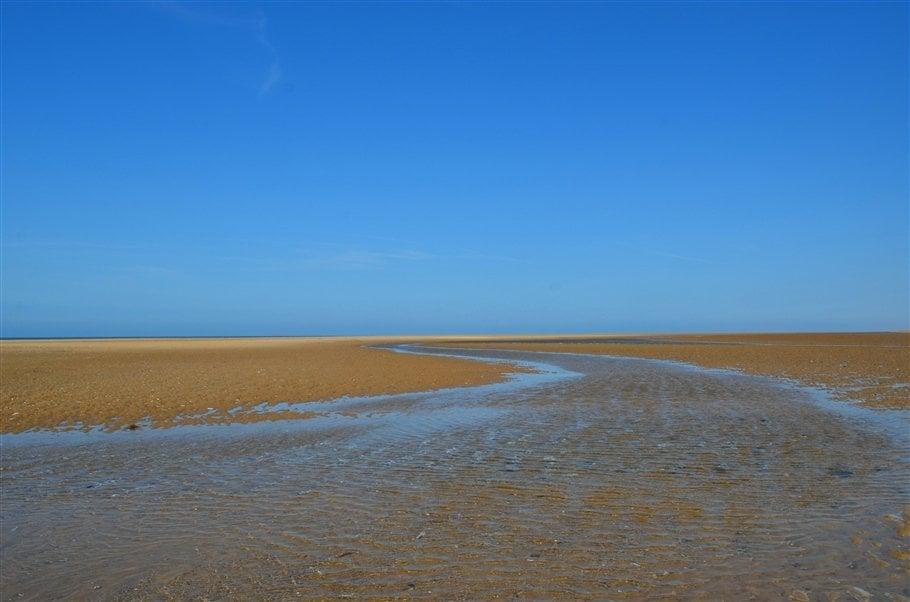 10. low tide- norfolk