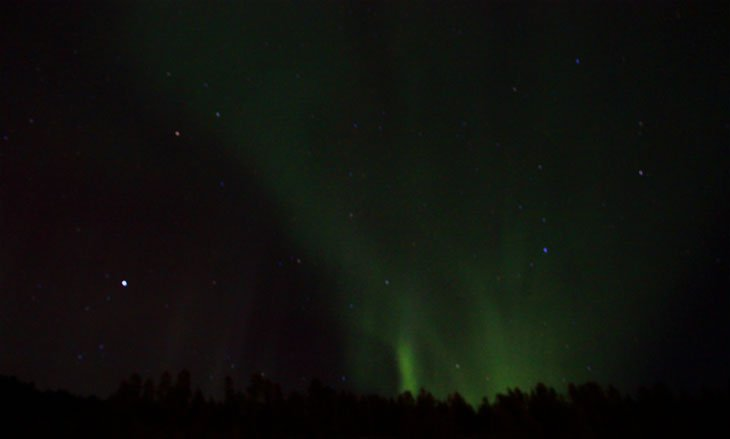 10 patricia 029 The Northern Lights Came Out To Play