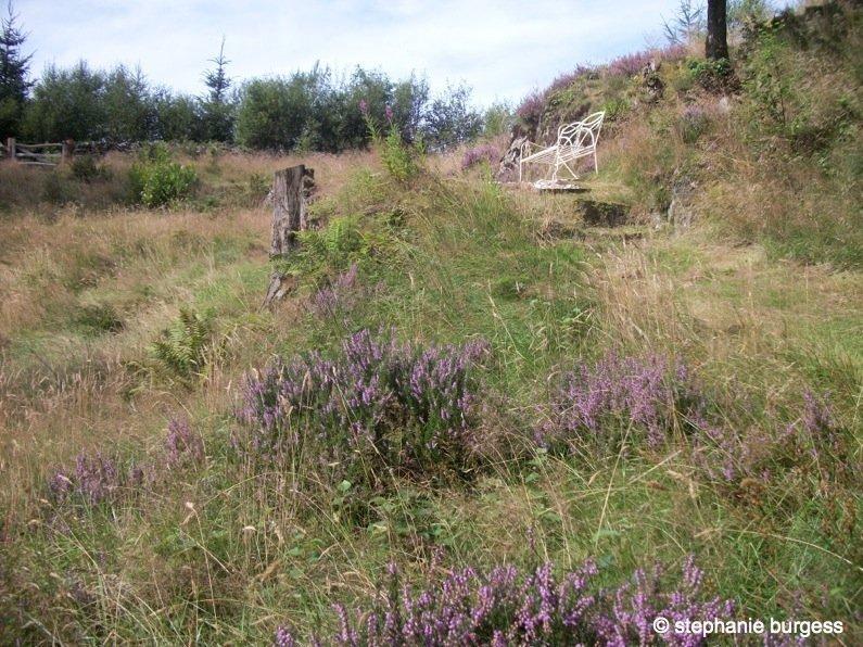 12-Wales Four Seasons at the Hafod Estate, Pontrhydygroes