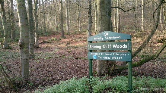 13-Shining-Cliff-Woods-walk Shining Cliff to Alderwasley circular walk via Cromford Canal