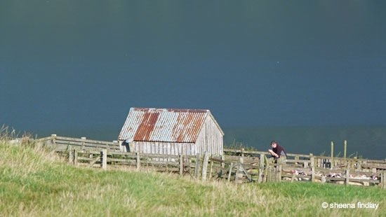 14.-Up-the-hill-from-Acharn-The-Rob-Roy-Way-Sept-2014 Rob Roy's Way – Part 2