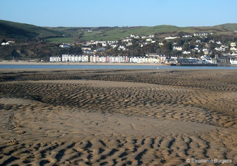 16-wales- The Bronze Age, Submerged Forest, Borth Beach