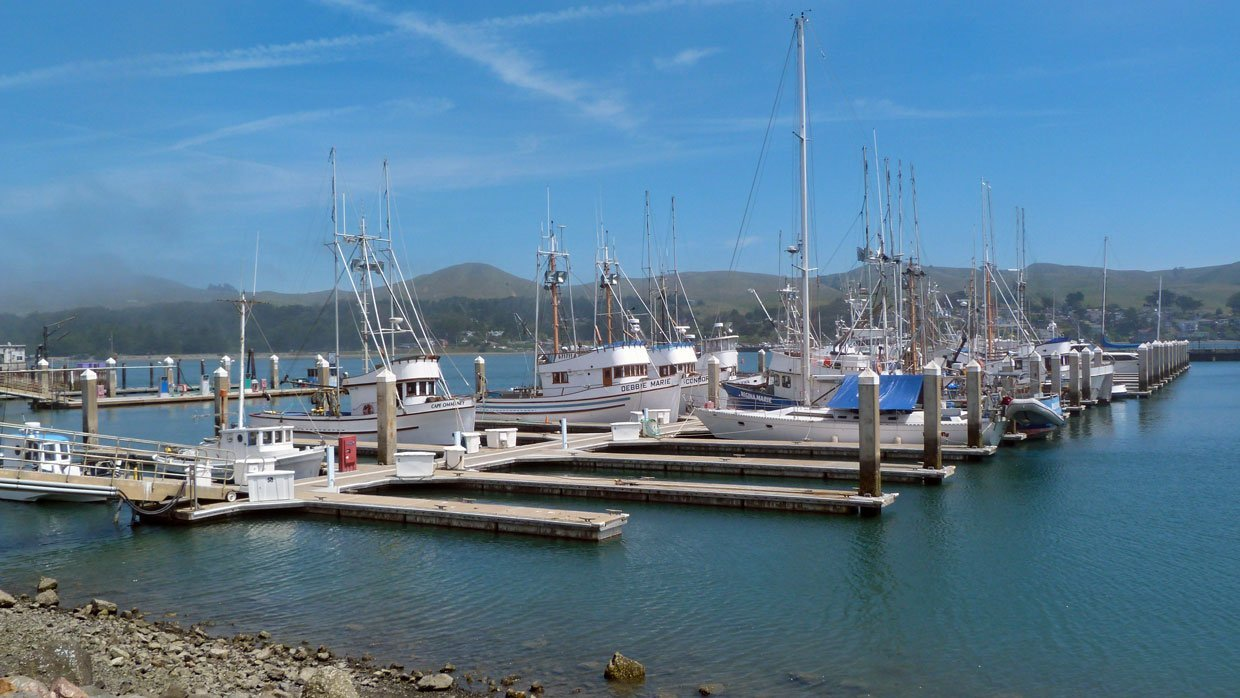16.-Marina-at-Bodega California – A Trip Out To Bodega Bay