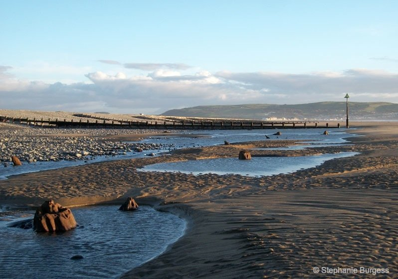 17-wales- The Bronze Age, Submerged Forest, Borth Beach