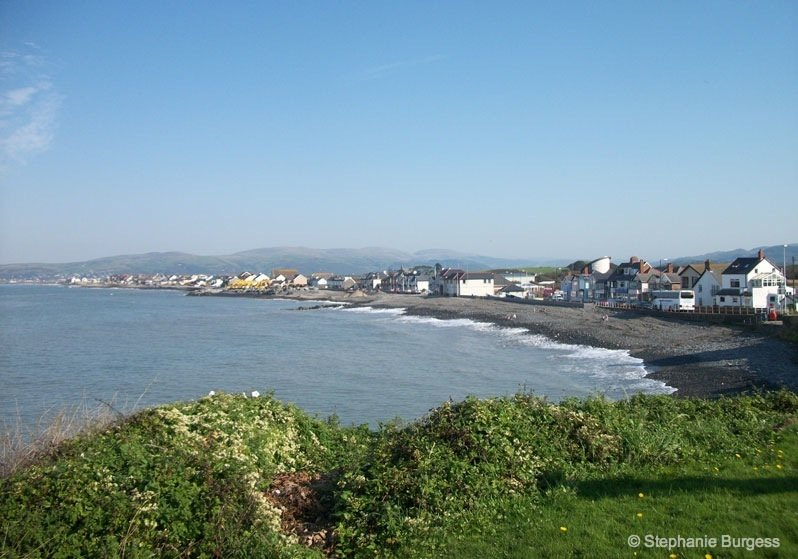 2-wales- The Bronze Age, Submerged Forest, Borth Beach