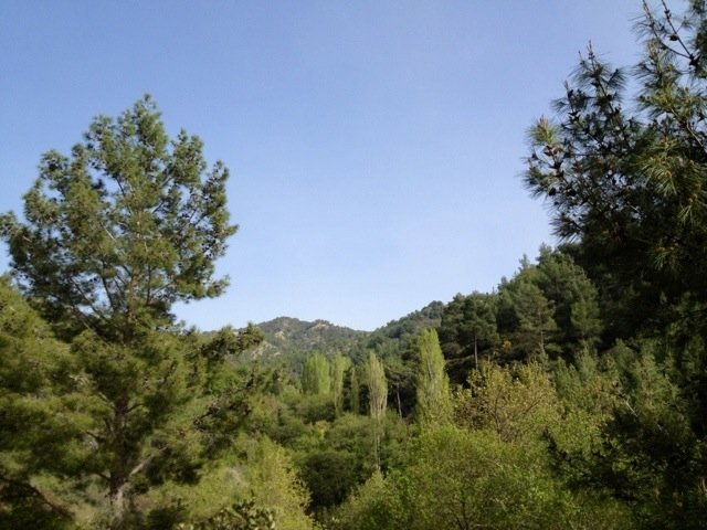 Hiking in the Troodos right now.. Lovin it :)