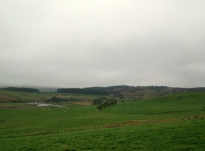 Good morning from #Northumberland :) A fine grey start