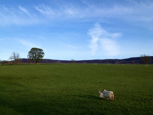 Tis a lovely evening for it :D #Northumberland