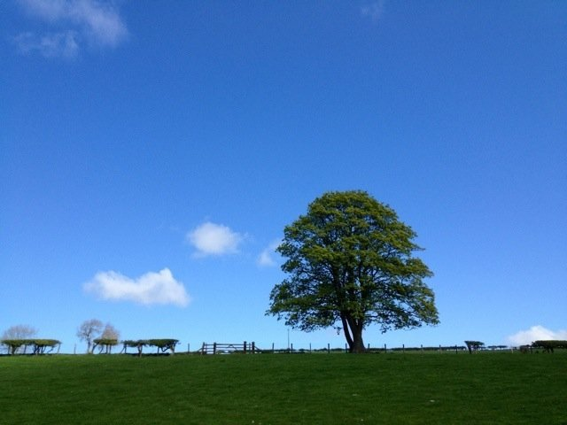 Happy blue skies from here in Northumberland :) smiles to all