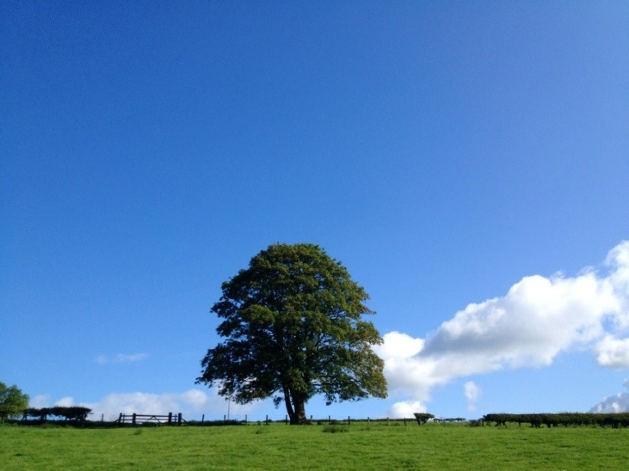 Tis a lovely start here in Northumberland :) *smiles* and coffee to all :)
