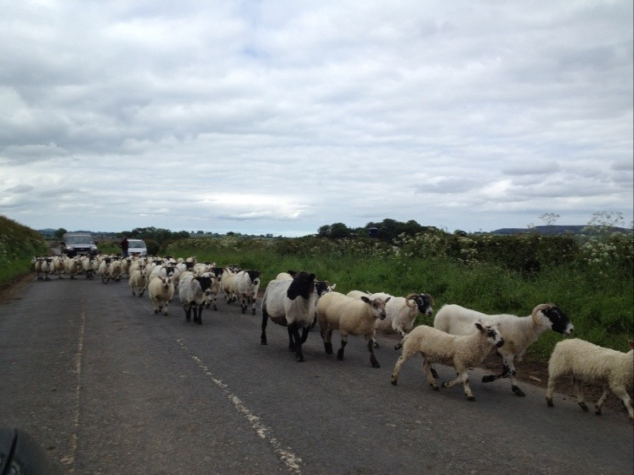Good evening from Northumberland.. Rushing home.. Roads jammed! :)