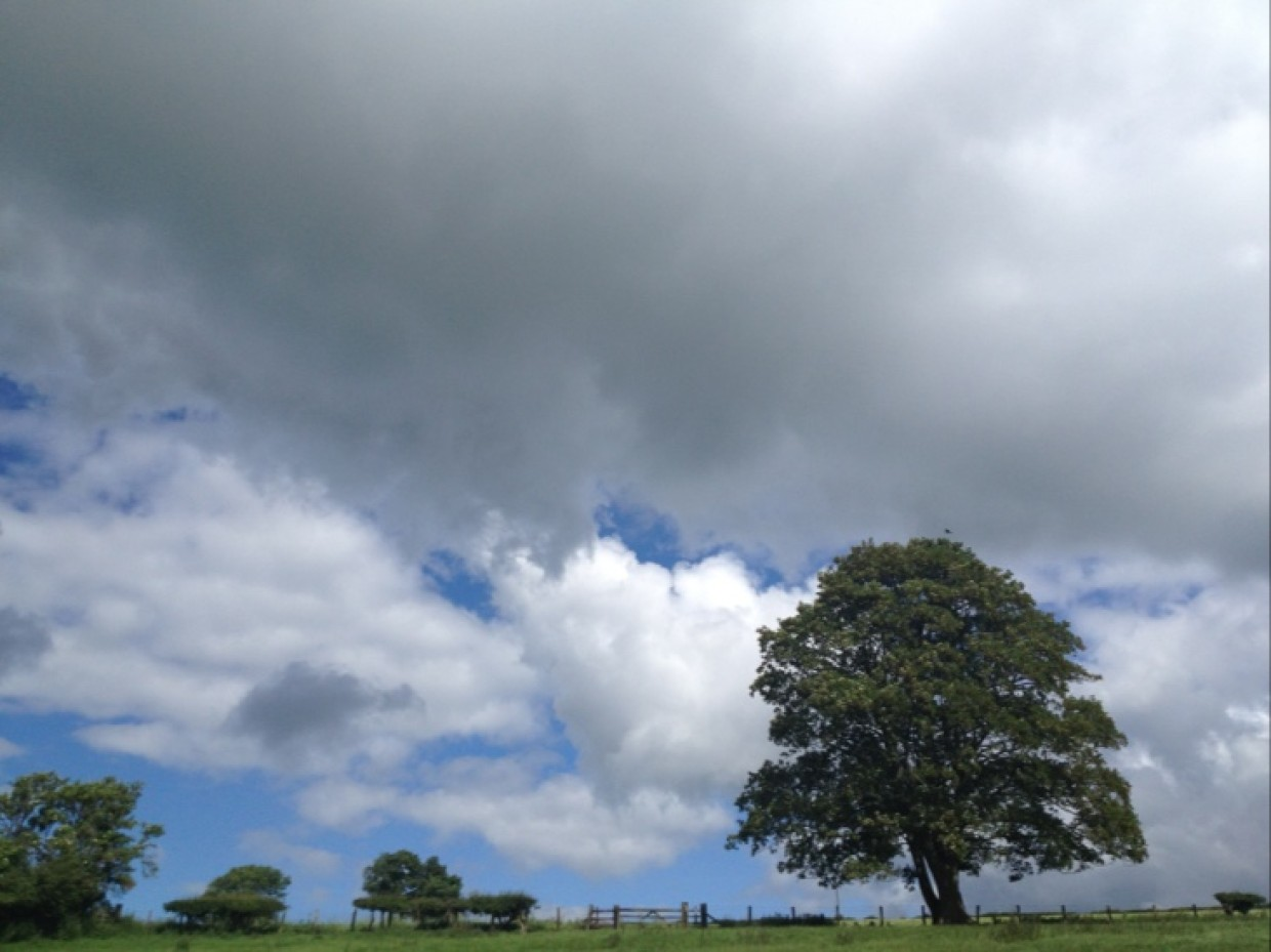 Breezy but fine day indeed here in Northumberland.. Have a great one :D