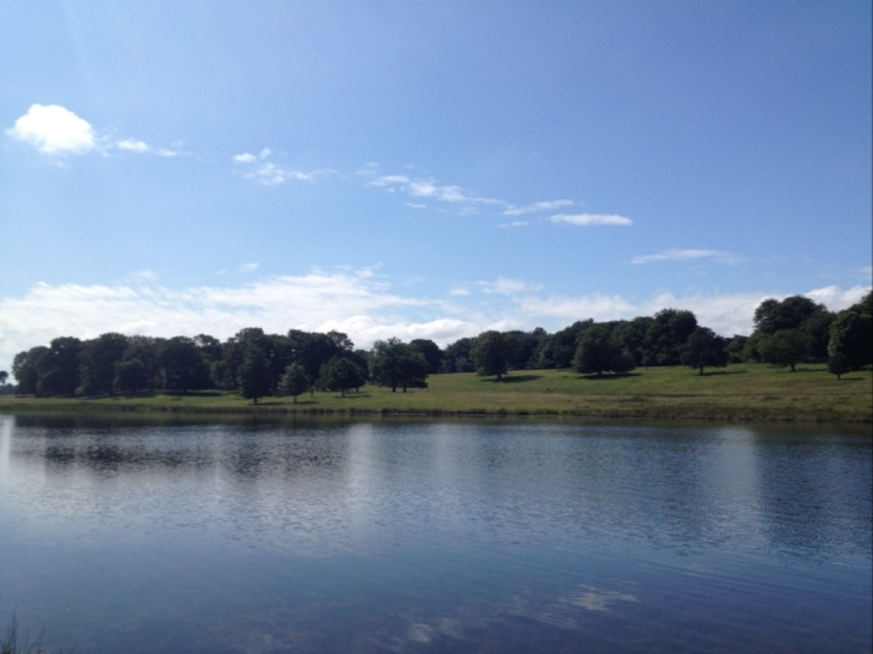Good morning *waves* from Tatton Park, Cheshire :)