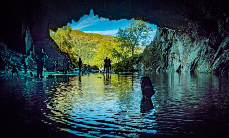 dog in Rydal cave