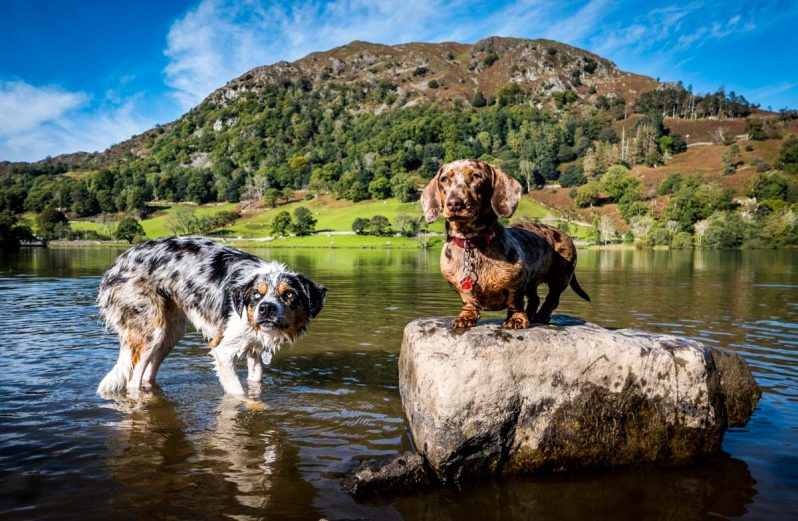 malc and gladys at Rydal water