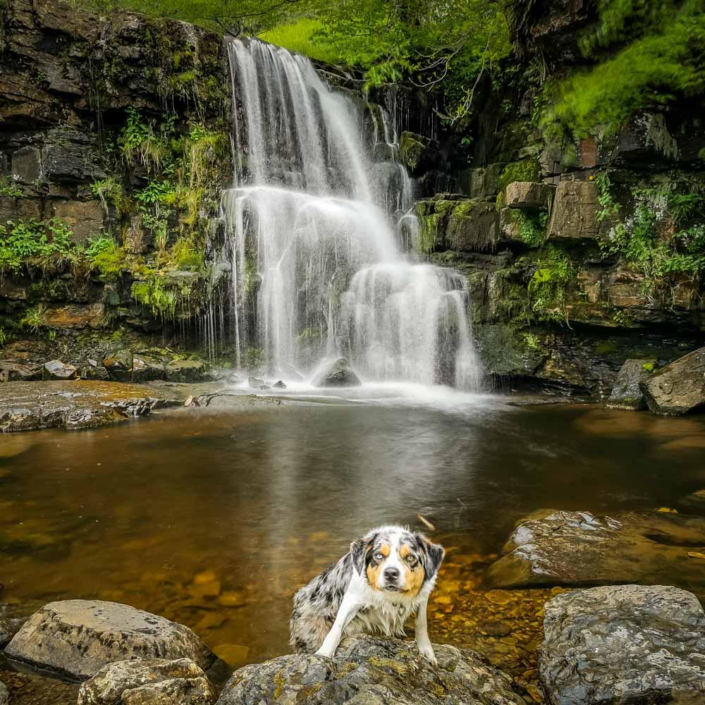 east gill waterfall keld