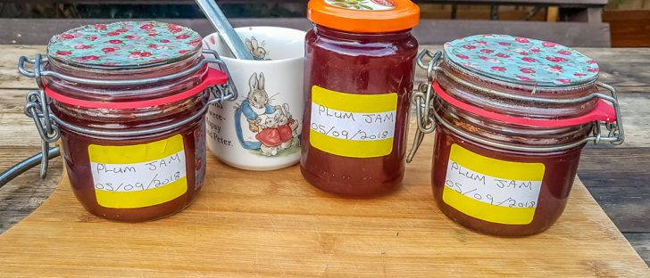 Plum-Jam-in-labeled-Jars-728x312 Trending