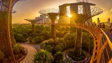 Exploring Singapore - The Futuristic City in a Garden
