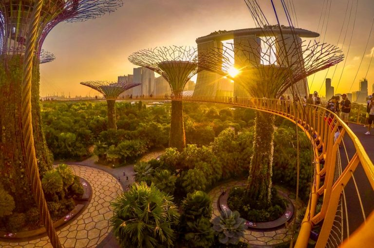 Exploring Singapore – The Futuristic City in a Garden