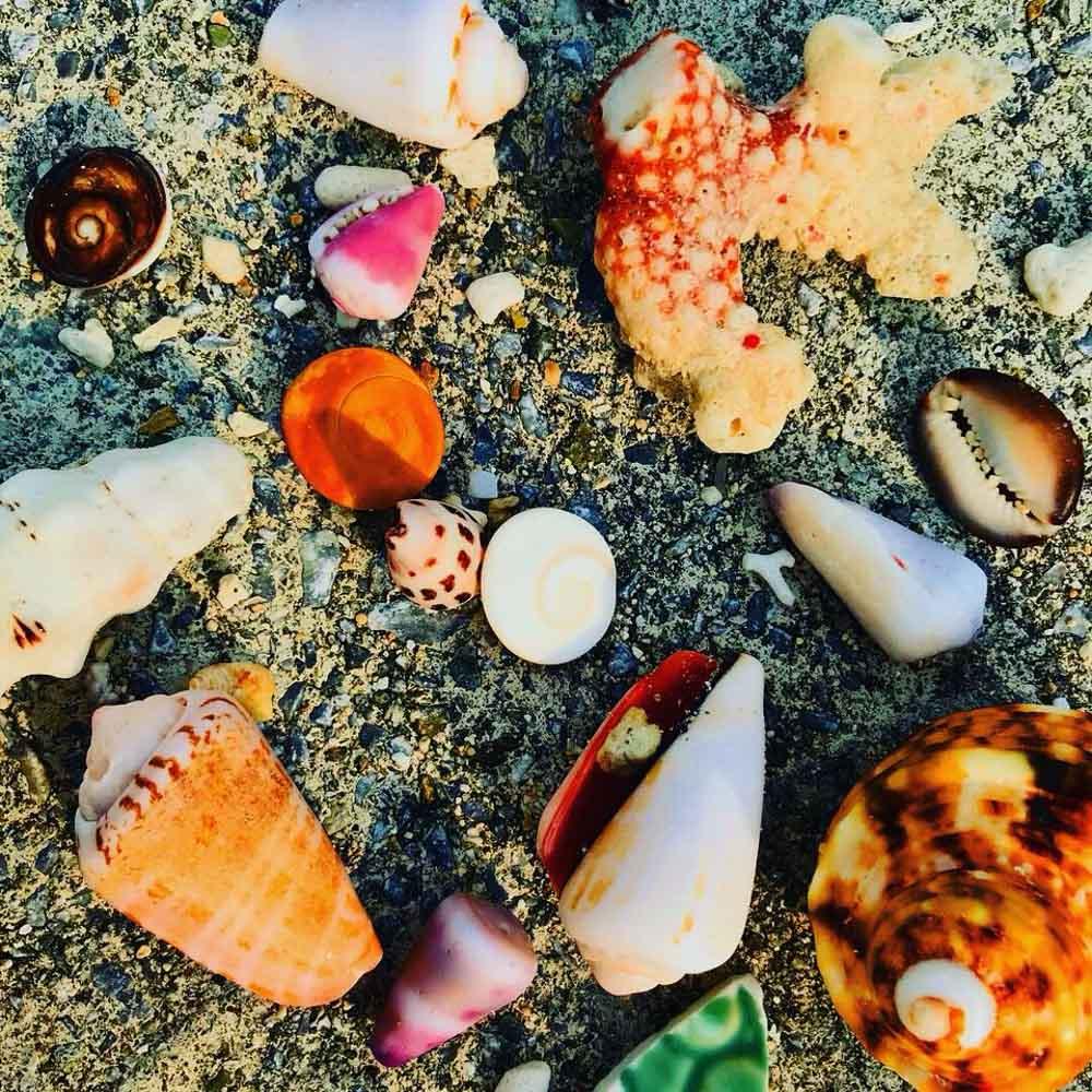 Aka-shells Akajima Island - Relax In Paradise