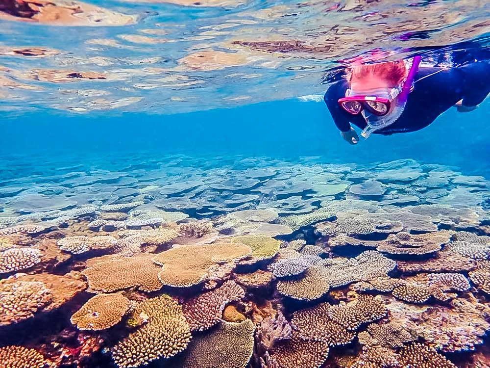 Aka-snorkelling Akajima Island - Relax In Paradise