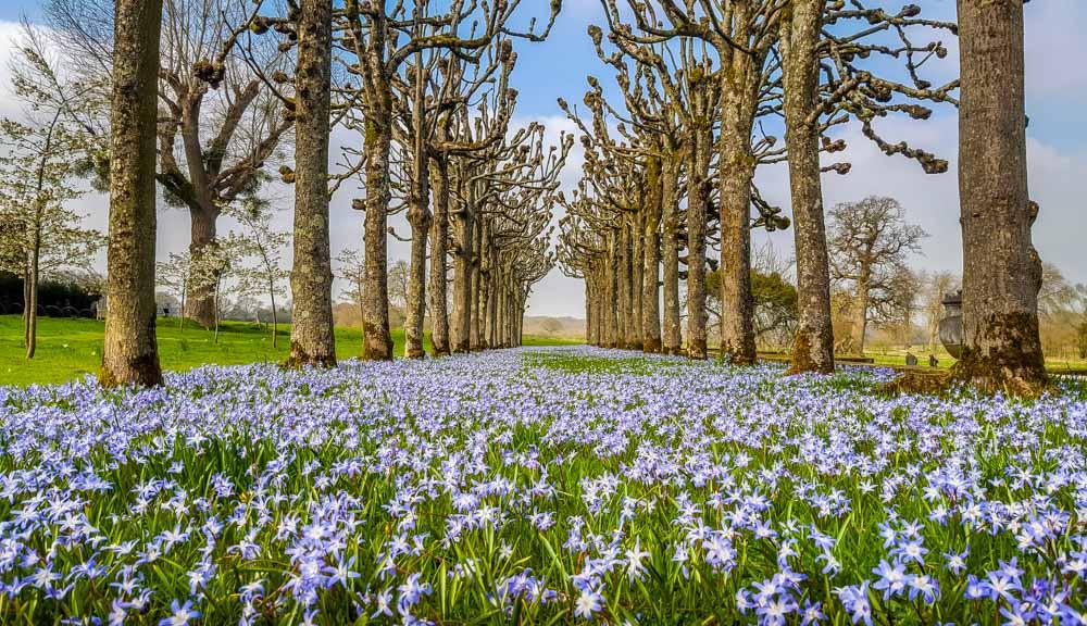 Mottisfont Abbey - A Garden For All Seasons