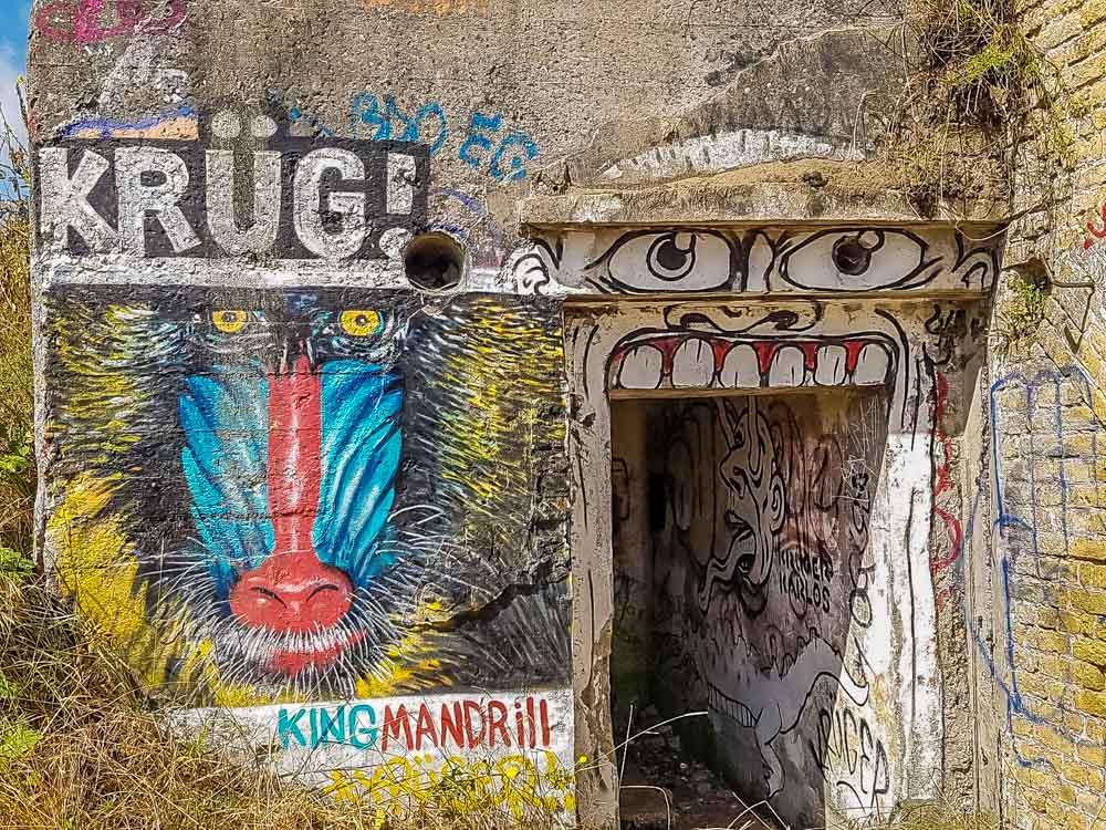 Blockhouses and Graffiti Art of Leffrinckoucke Beach 9