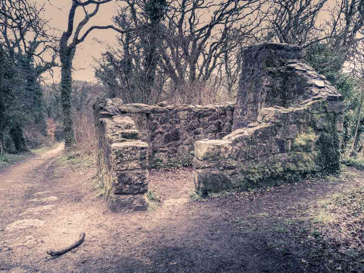 20180407_114259 Luxulyan Valley Walk, Cornwall – Industrial Heritage and Natural Beauty