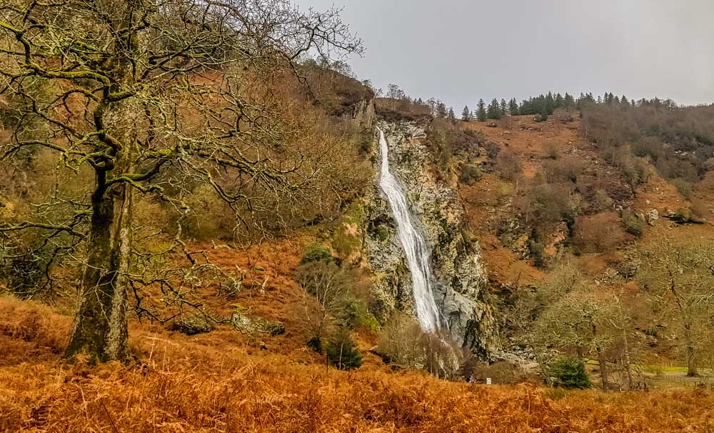 20190101_131918 Powerscourt Waterfall, Ireland's Highest Waterfall