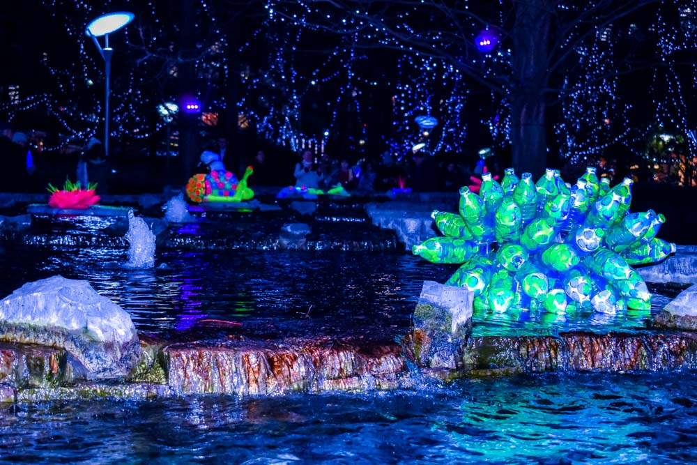 DSC_0425 Winter Lights Festival London - Photographer's Delight
