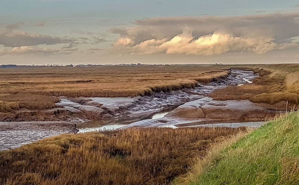 Low-tide-at-the-saltmarsh An Evening Walk at RSPB's Freiston Shore Nature Reserve