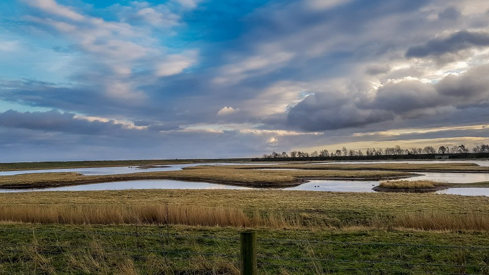 An Evening Walk at RSPB's Freiston Shore Nature Reserve
