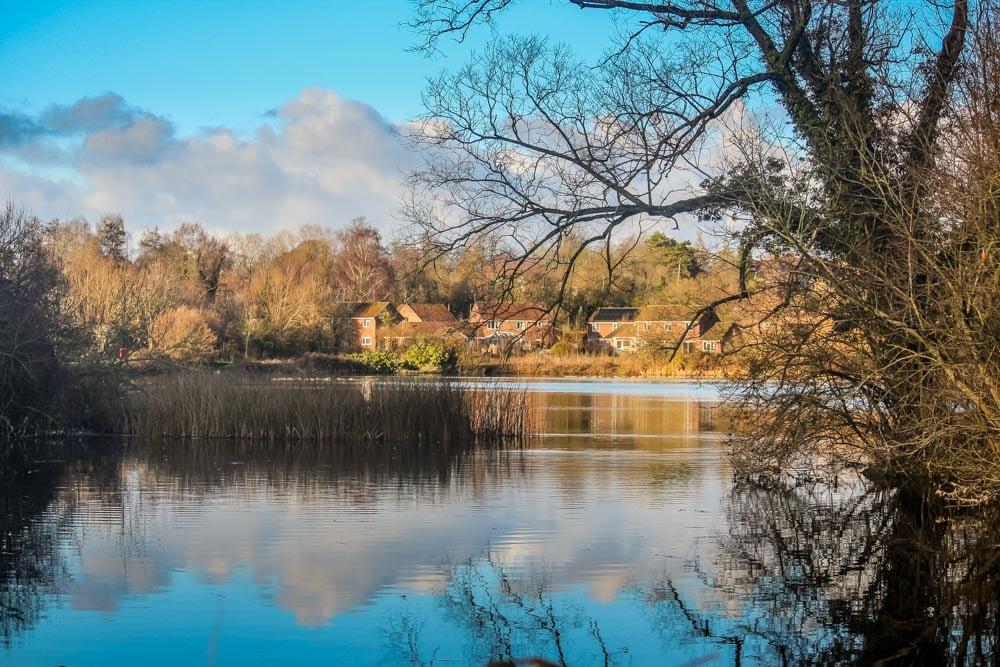 A Walk Around Rooksbury Mill Nature Reserve - Andover 1