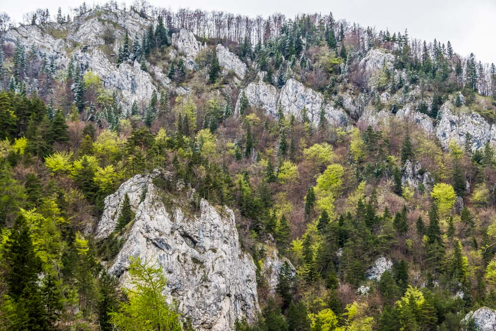 Exploring Europe: A Walking Holiday in Slovakia