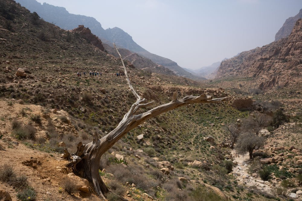 Dana-Trek-1 The Jordan Trail – Dana to Petra