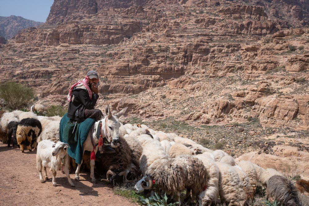 Dana-Trek-2 The Jordan Trail – Dana to Petra