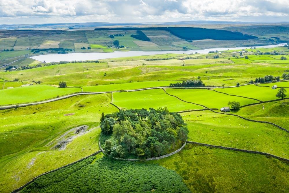 Grasholme reservoir behind the mound