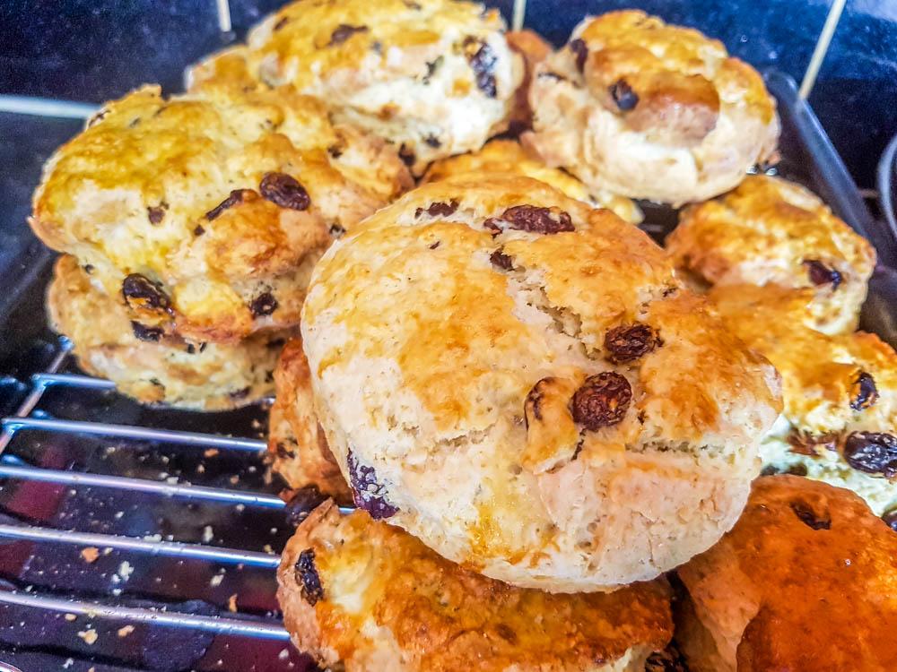 Fruited-scones-cooling-1 Simple Recipe for Scones, Sweet or Savoury Varieties
