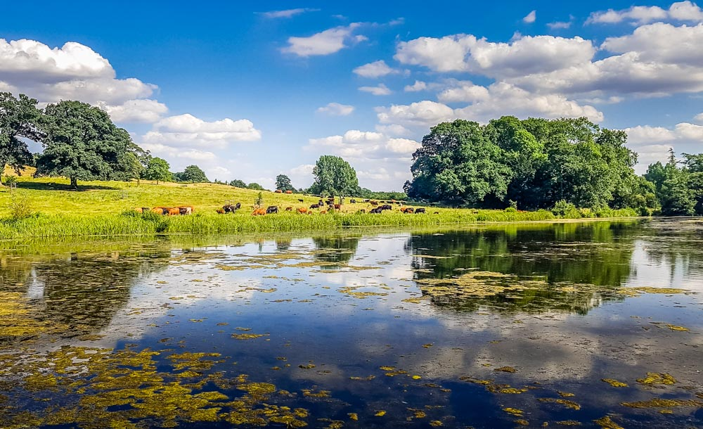 Lake-at-Staunton-Harrold-hall Staunton Harold Estate and the Ferrers Centre – Leicestershire
