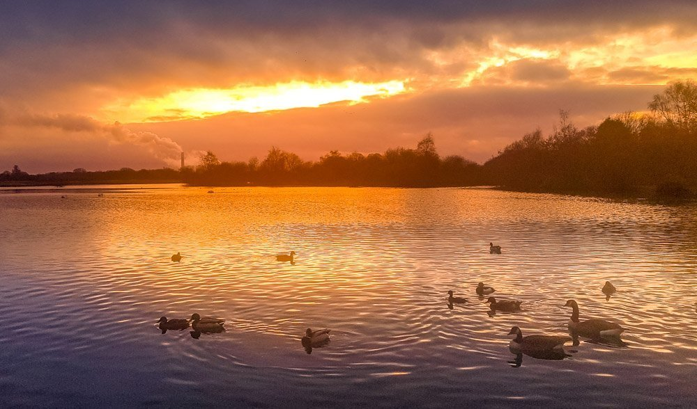 Attenborough Nature Reserve, A Nottinghamshire Treasure