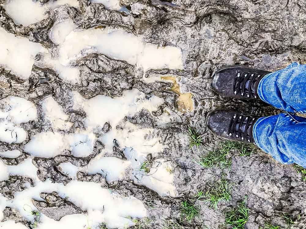 muddy paths