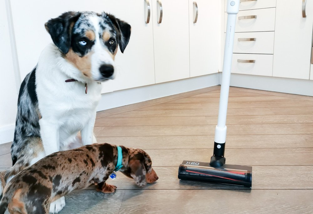 IMG_20200217_075431 The ROIDMI X20 - Powerful Cordless Vacuum & Mop All In One