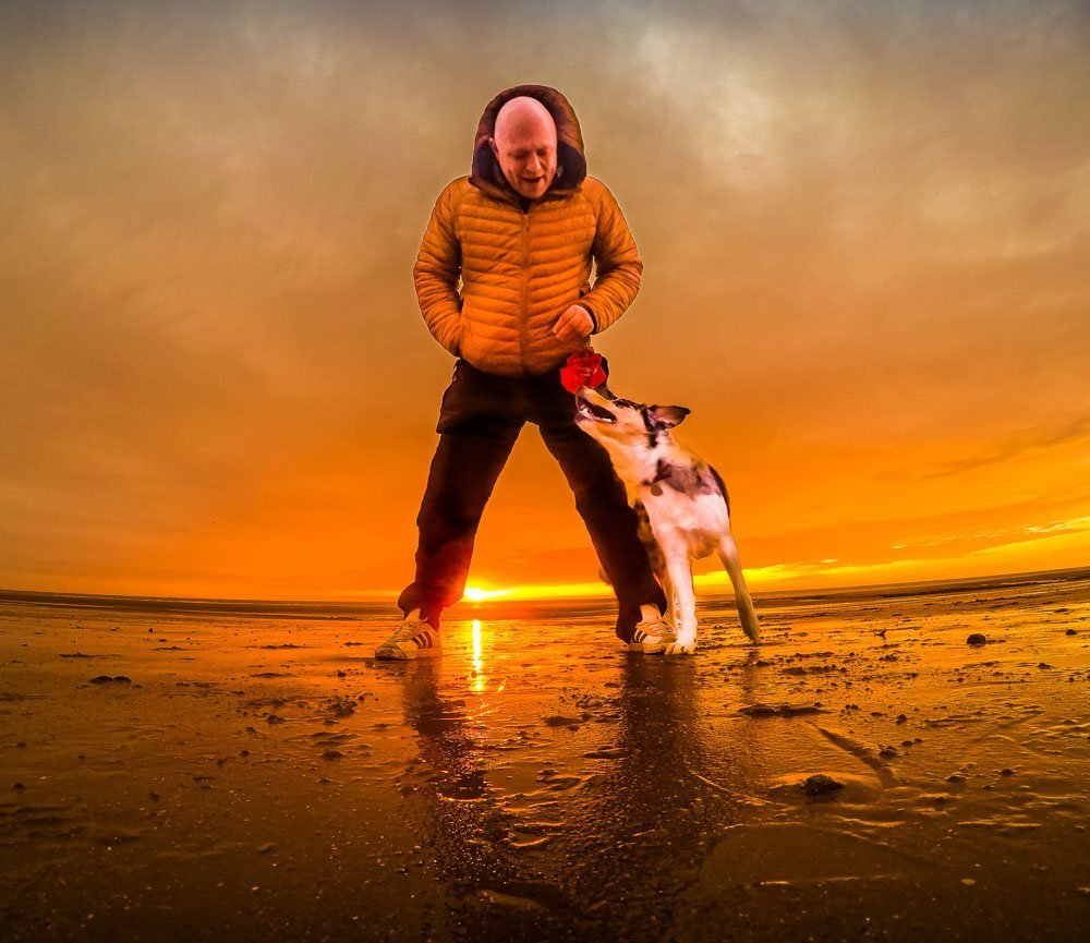 sunset-with-Border-Collie 5 Tips For Taking Better Pet Photos