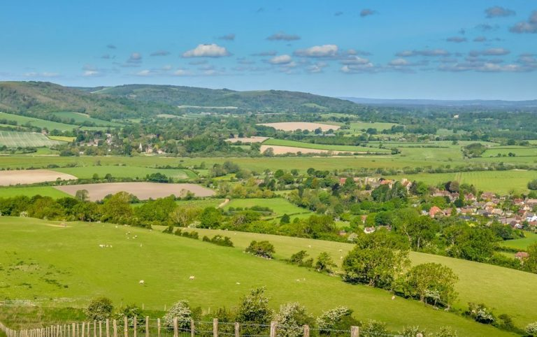 A South Downs Walk – Slindon and The Great Down